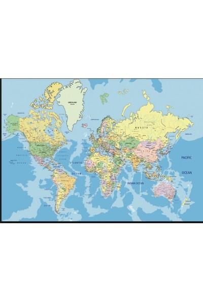 Hobi Eğitim Dünyası 1000 Parça Puzzle (Dünya Haritası)