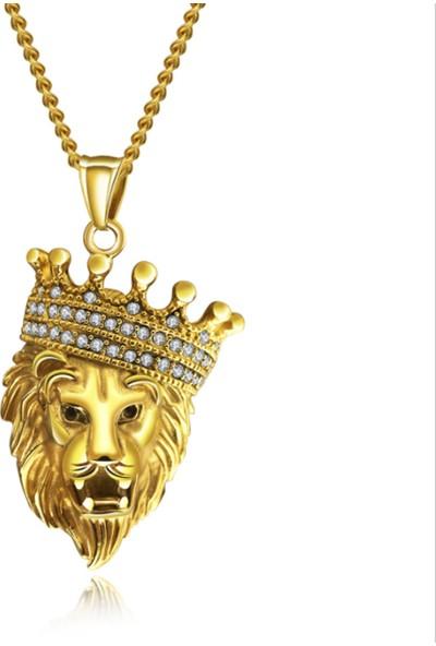 Chavin Kral Tacı Aslan Kafası Çelik Erkek Kolye Ds79 102450025377
