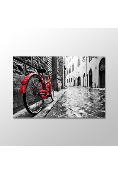 Tek Tablo Arnavut Kaldırımlı Sokakta Kırmızı Bisiklet Kanvas Tablo