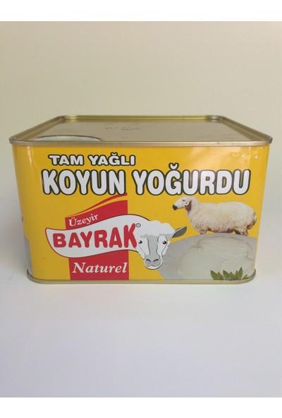 GurmeparkKarapınar Koyun Yoğurdu 2 kg