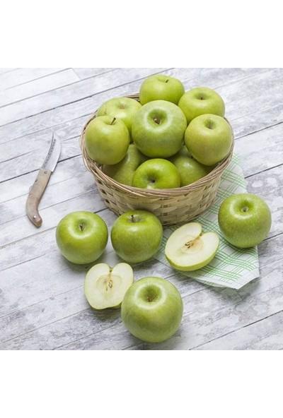 Mutlu Sebzeler Yeşil Elma ( Grannysmıth ) (1Kg)