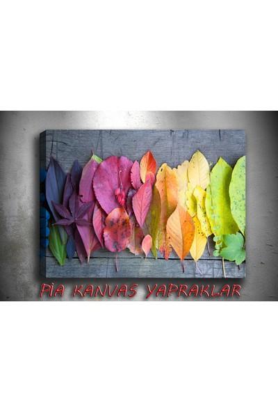 Pia Hediyelik Kanvas Tablo Renkli Yapraklar