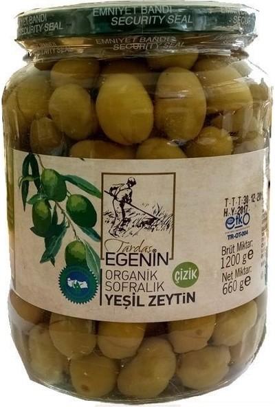 Tardaş Egenin Organik Çizik Yeşil Zeytin 660 gr