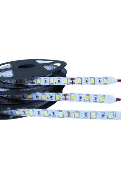 Powerlux 5630 Şerit Led Beyaz 8 Çip Mt 60 Ledli Ip20 (5 Mt)