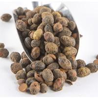 Merve Baharat Eaktariye Defne Tohumu 250 gr