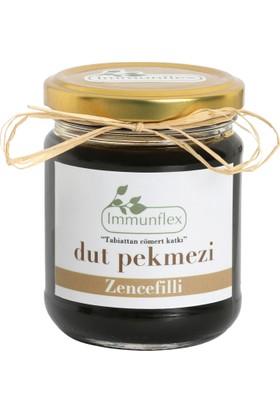 Immunflex Zencefilli Dut Pekmezi 220 gr