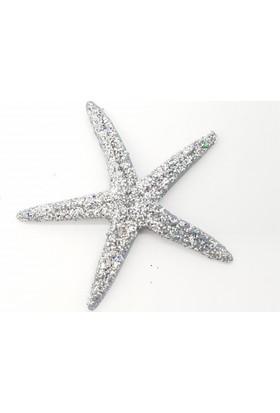 Yavuz Deniz Yıldızı 25 Adet Deniz Yıldızı Simli Gümüş ( 9 cm)