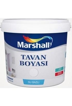 Marshall Tavan Boyası