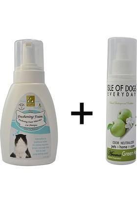 Freshening Foam Cat Köpük ve Replacent elma kokulu parfüm