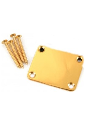 Dr Parts NP1/GD Neck Attachment Plate - Gold