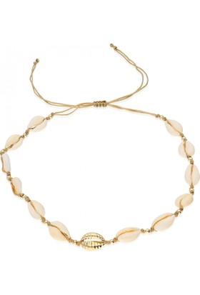 Pink Gold Store I'Isabellas Deniz Kabuğu Choker Kolye TA7494 Kum Beji