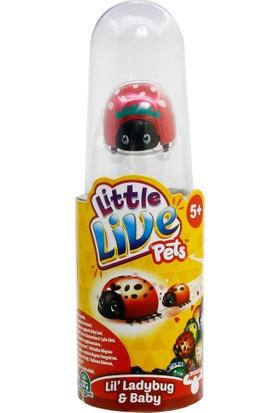 Little Live Pets Kırmızı Uğur Böceği Tekli Paket