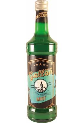 Gallon Nane (Green Mint) Aromalı Kokteyl Şurup 70 cl
