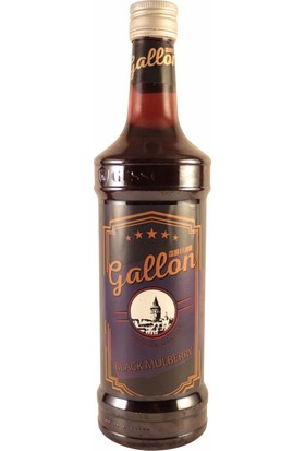 Gallon Karadut (Black Mulberry) Aromalı Kokteyl Şurup 70 cl