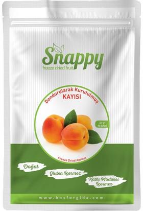 Snappy Freeze Dried Kayısı 20 gr