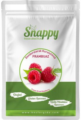 Snappy Freeze Dried Frambuaz 15 gr