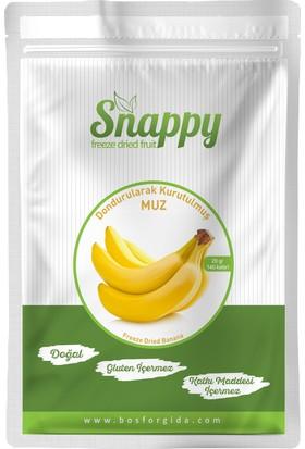 Snappy Freeze Dried Muz 20 gr