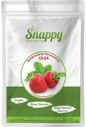 Snappy Freeze Dried Çilek 15 gr
