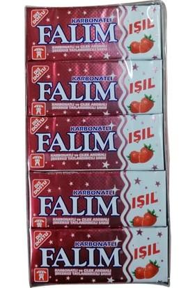 Falım Işıl Şekersiz Sakız Çilek Aromalı 5 li 7gr x 20 Li