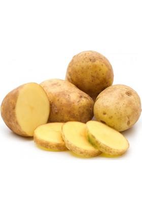 Tazece Patates - 3 kg