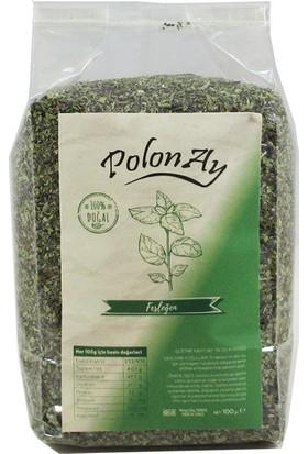 Polonay Fesleğen 100 gr