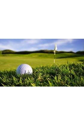 Yaylera Golf Topu Temalı Dekoratif Kanvas Tablo 70*100 cm