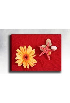 Yaylera Çiçek Deniz Yıldızı Taşlar Temalı Kanvas Tablo 70*100 cm
