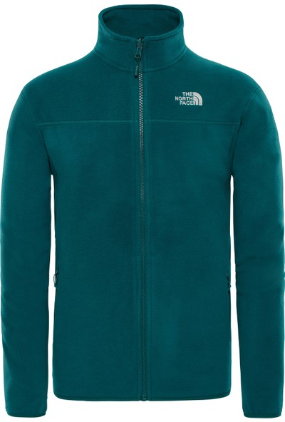 The North Face The North Face M 100 Glacier Full Erkek Poları