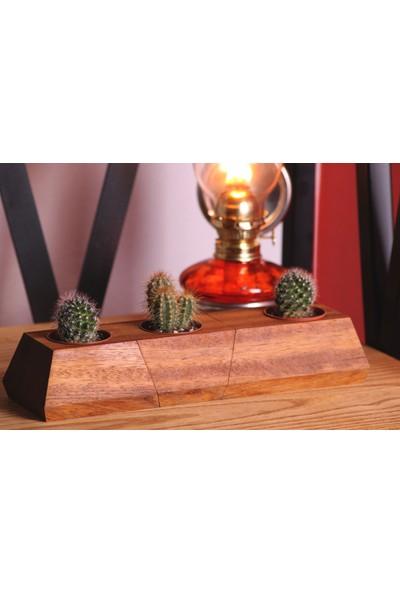 Woodenplus Üçlü Ahşap Saksı Alcantra