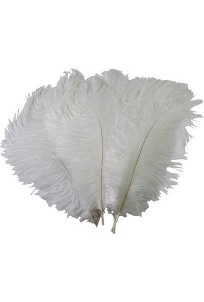 Brode Vazo Dekoratif Deve Kuşu Tüyü Beyaz ( 20-25 cm )