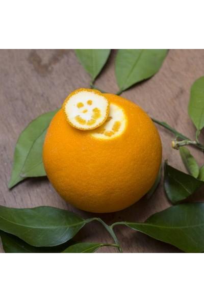 Mutlu Sebzeler Portakal Sıkmalık (2Kg)