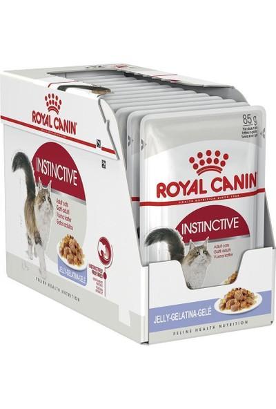 Royal Canin Fhn Instinctive In Jelly Yetişkin Jöleli Kedi Konservesi 85 Gr X 12
