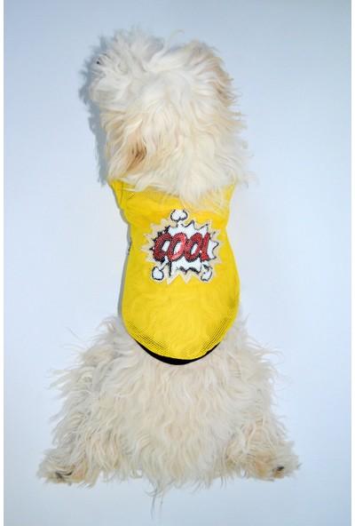 Dogi & Dog Cool File Kedi-Köpek Tshirt-Köpek Kiyafeti