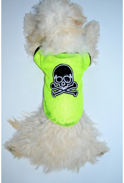 Dogi & Dog Neon Kurukafa Tshirt-Köpek Kiyafeti