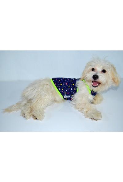 Dogi & Dog Puanlı Atlet-Köpek Kiyafeti-Kedi Kiyafeti