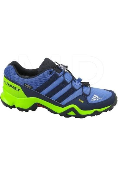 Adidas Terrex Gtx Ayakkabı CM7704