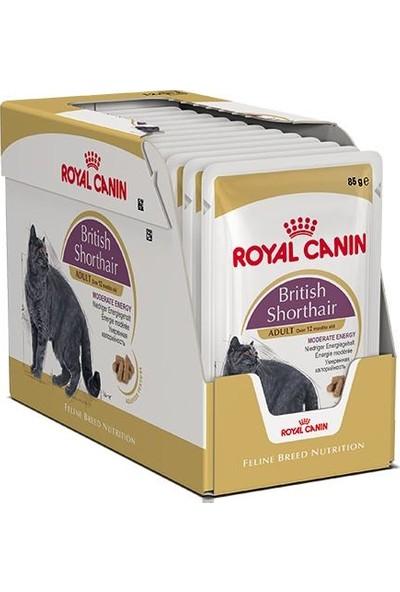 Royal Canin British Shorthair Yetişkin Pouch Kedi Konservesi 12x85 Gr