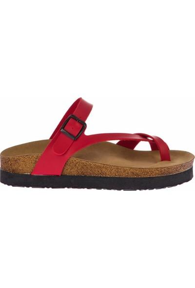 Fox Shoes Kırmızı Kadın Terlik B777753009
