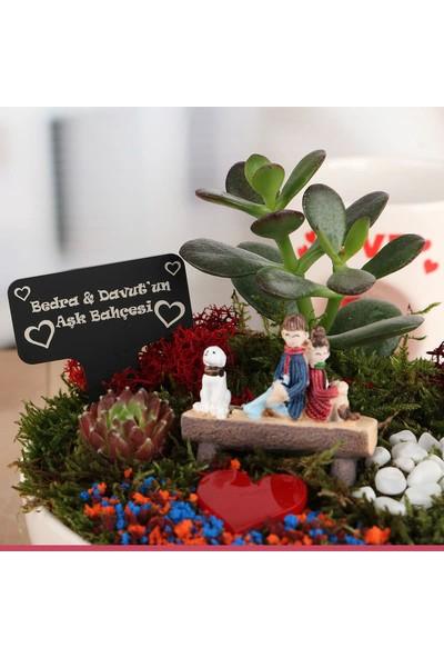 Hediye Sepeti Romantik Aşıklara Özel Canlı Bitki Sukulent Bahçesi