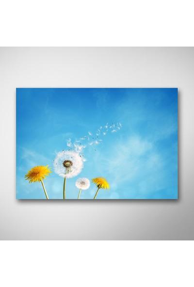 Tek Tablo Gökyüzü ve Çiçekler Kanvas Tablo