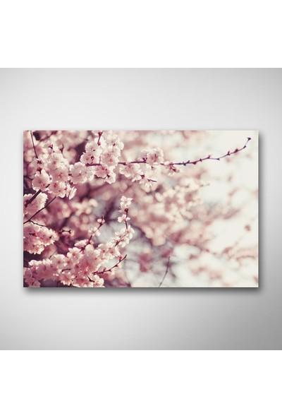 Tek Tablo İlkbahar Çicekleri Kanvas Tablo