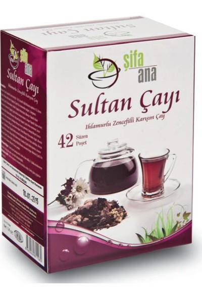 Şifa Ana Sultan (Kış) Çayı