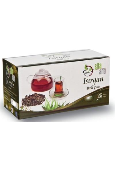 Şifa Ana Isırgan Çayı