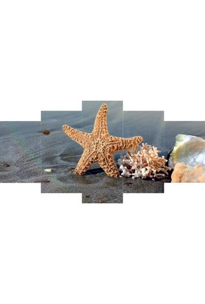 Reti̇color Deniz Yıldızı Tablo