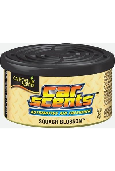 California Car Scents Squash Blossom Balkabağı Oto Kokusu