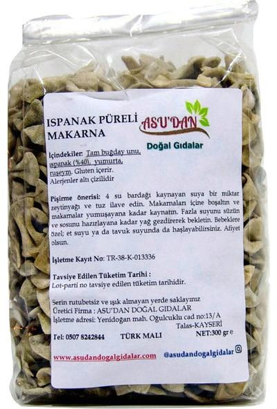 Asudan Doğal Gıdalar Şekersiz Keçiboynuzlu Puding Karışımı 160 gr
