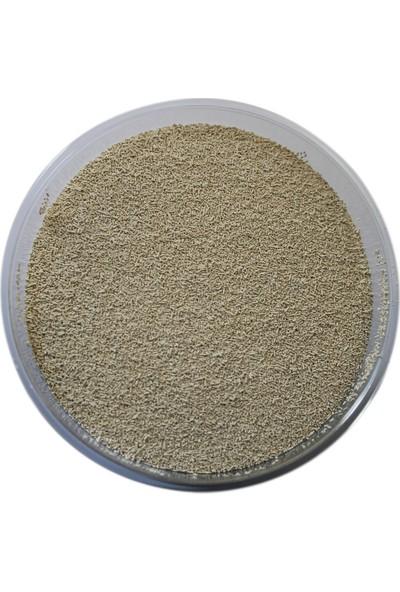 Alfasol Maya Besini 250 gr