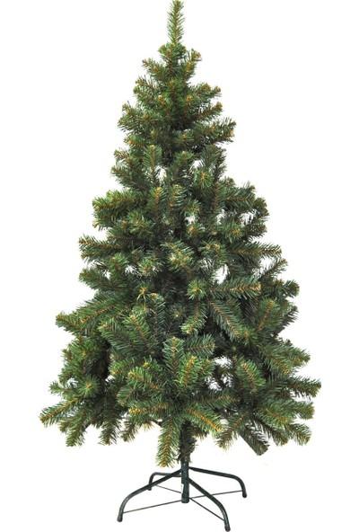 İkea Çam Ağacı