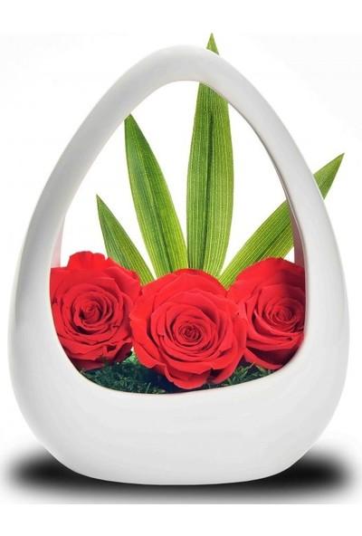 Çiçek mi Lazım Solmayan Kırmızı Gül