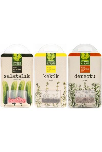 Osmanli Bahçesi Yerli Çengelköy Salatalık Tohumu Yerli Kekik Tohumu Yerli Dereotu Tohumu Yetiştirme Seti 3 Tohum Seti 1 Arada